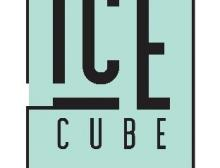 ICE CUBE Startup School Thomas More